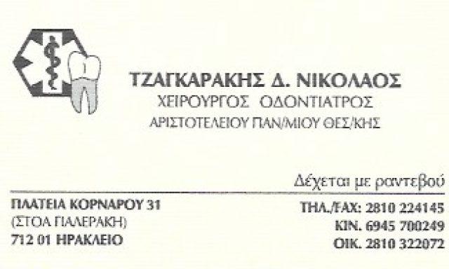 ΤΖΑΓΚΑΡΑΚΗΣ ΝΙΚΟΛΑΟΣ
