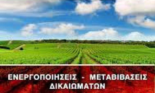 ΖΕΥΓΙΤΗΣ Ι. ΠΑΝΑΓΙΩΤΗΣ (ΑΓΡΟΣΥΜΒΟΥΛΕΥΤΙΚΗ)